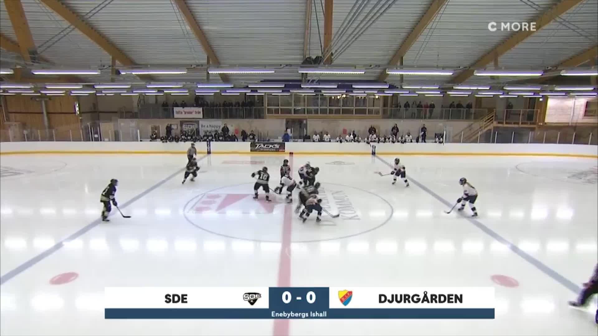 Highlights SDE-Djurgården 29 januari