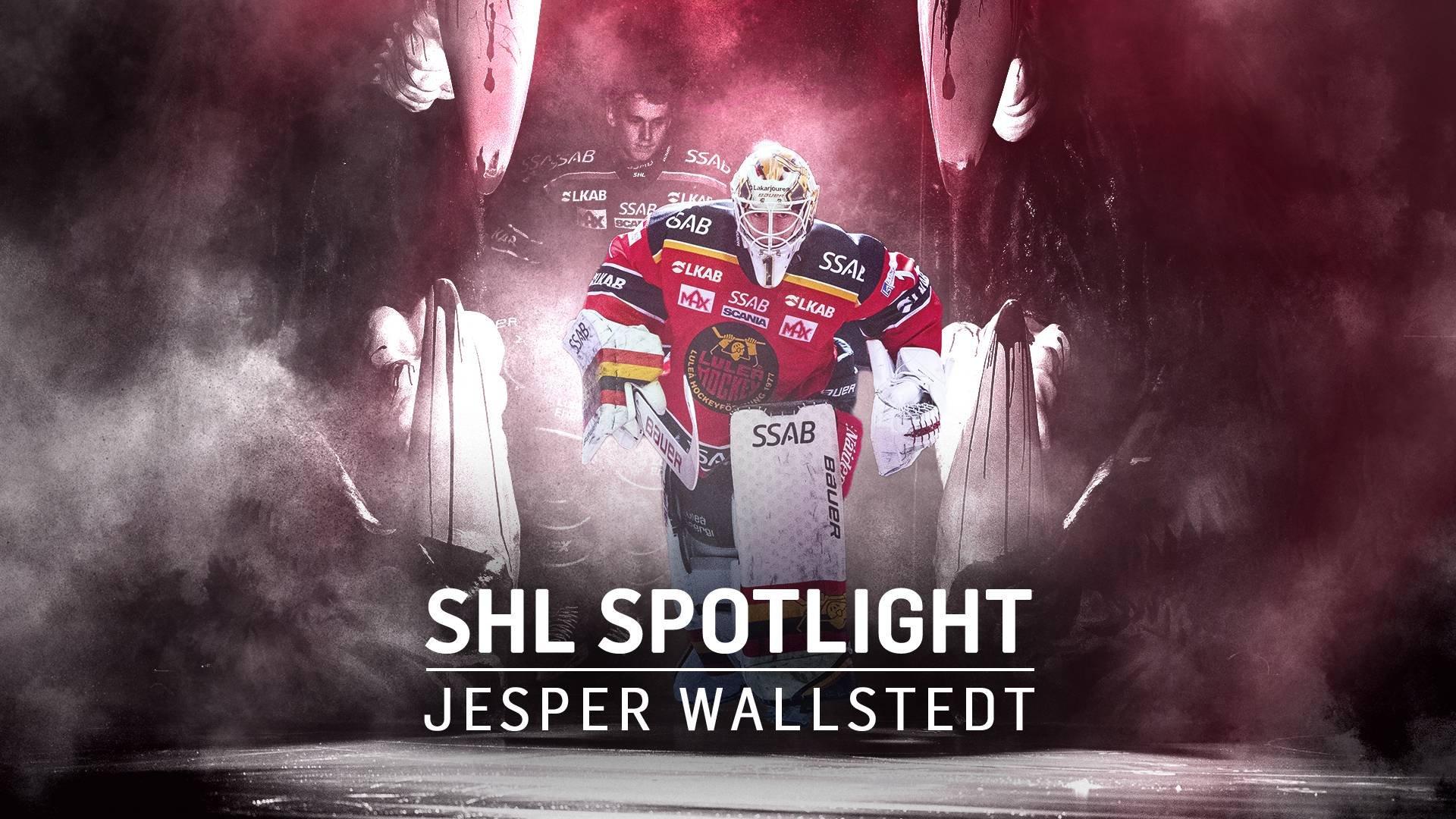 SHL Spotlight - Jesper Wallstedt
